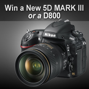 SnapKnot Nikon Canon Camera Giveaway